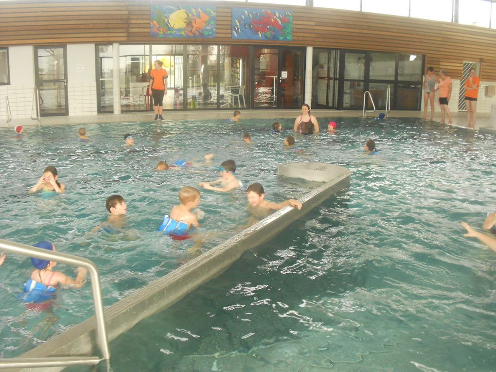 S quence piscine avec les gs cp ce1 l 39 cole sainte anne for Piscine questembert