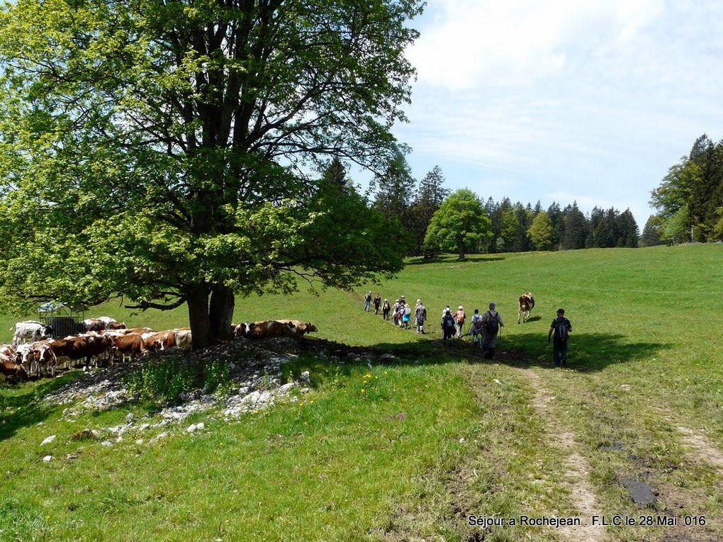 Les marcheurs de FLC se délocalisent dans le Jura,