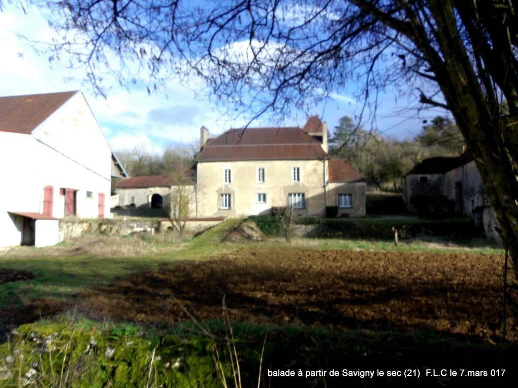 Images de la Balade depuis Savigny le Sec