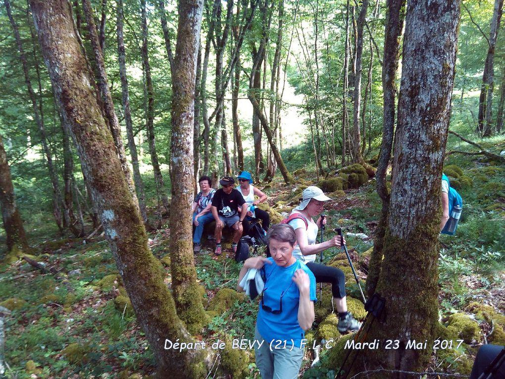Promenade en forêt domaniale de Détain-Gergueil