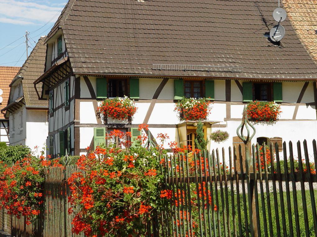 Les maisons alsaciennes, œuvres de charpentiers