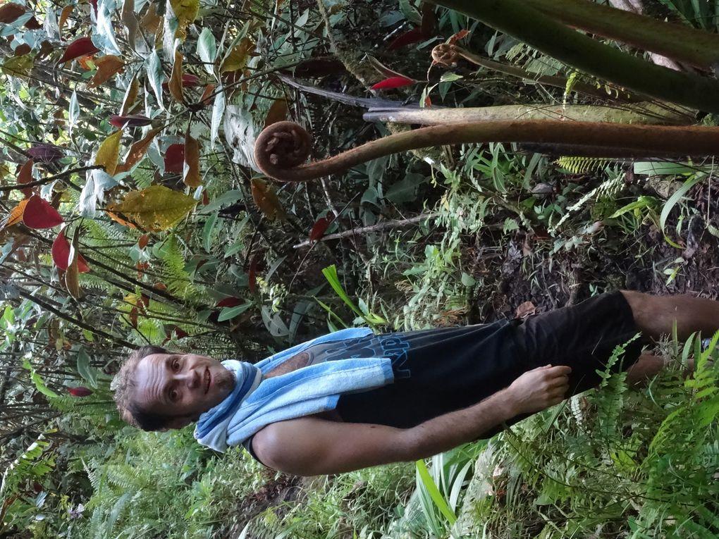 Place au jeu : toboggans aquatiques pour petits et grands au pied des plus hauts sommets de Tahiti.