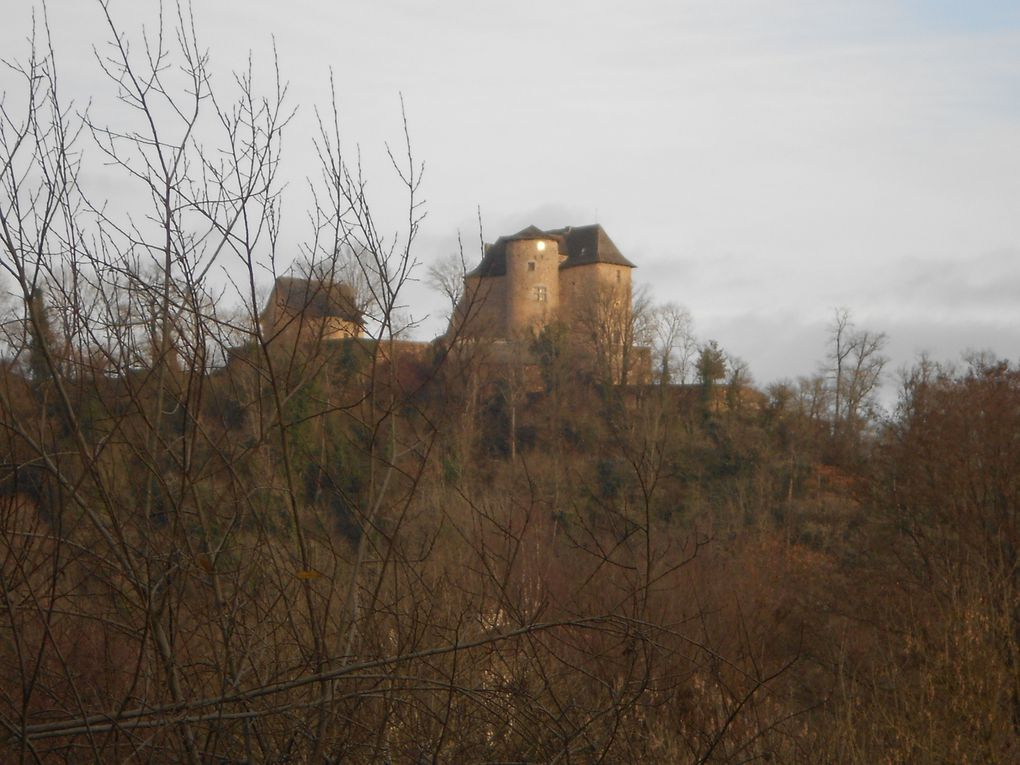 3ème photo, le TER passe au pied du château entre les arbres &#x3B;)