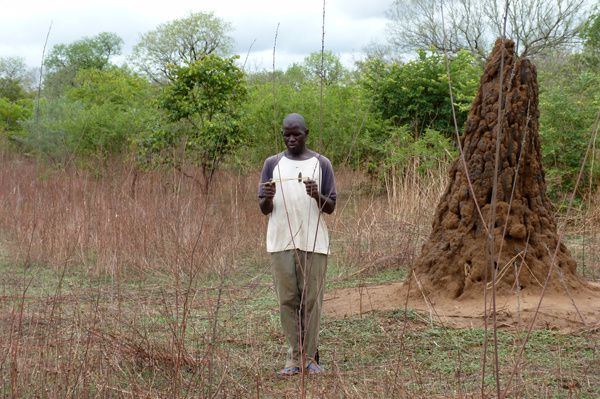 Moussa détermine le point de puisage... et trouve le même point que moi, sans avoir assisté à ma recherche ! (morceau de bois au sol)