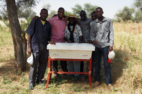 Enfumage et installation des ruches à Boully et Moutahala.