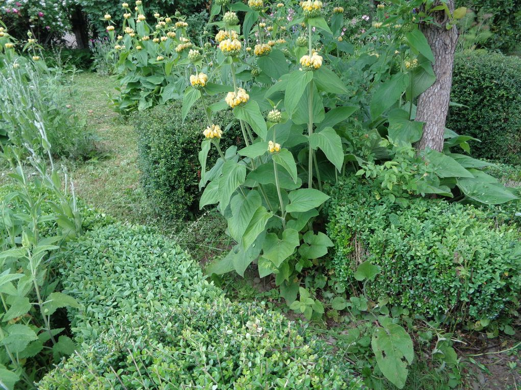 Le jardin d'un poète...