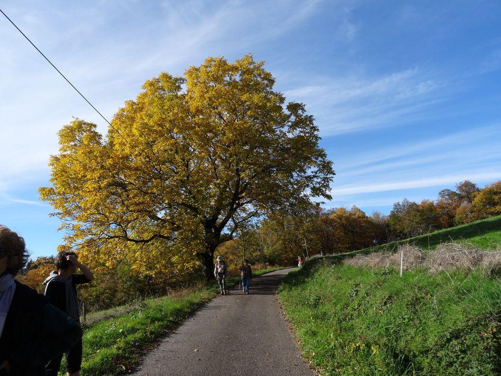 Balade d'automne à Saint Jean Lagineste proposée par Maryse et Jean. Beau temps, beaux paysages, belles histoires...