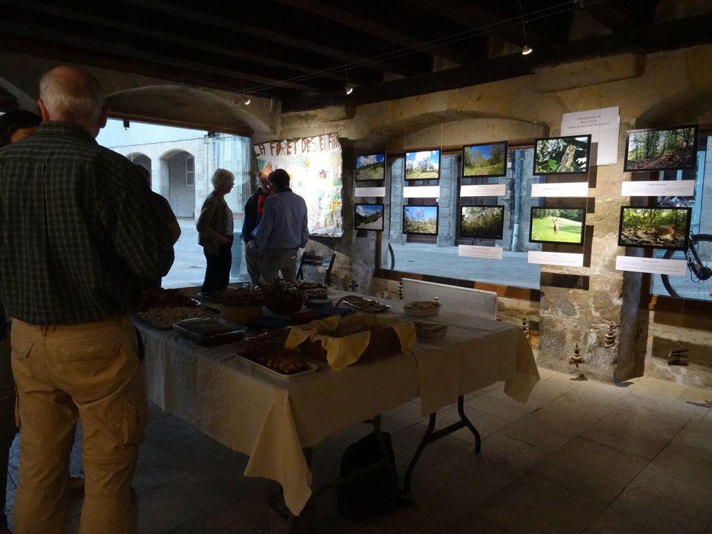L'exposition &quot&#x3B;La forêt au coeur de la vie&quot&#x3B; a été inaugurée hier