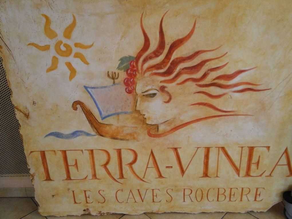 Caves Terra Vinea