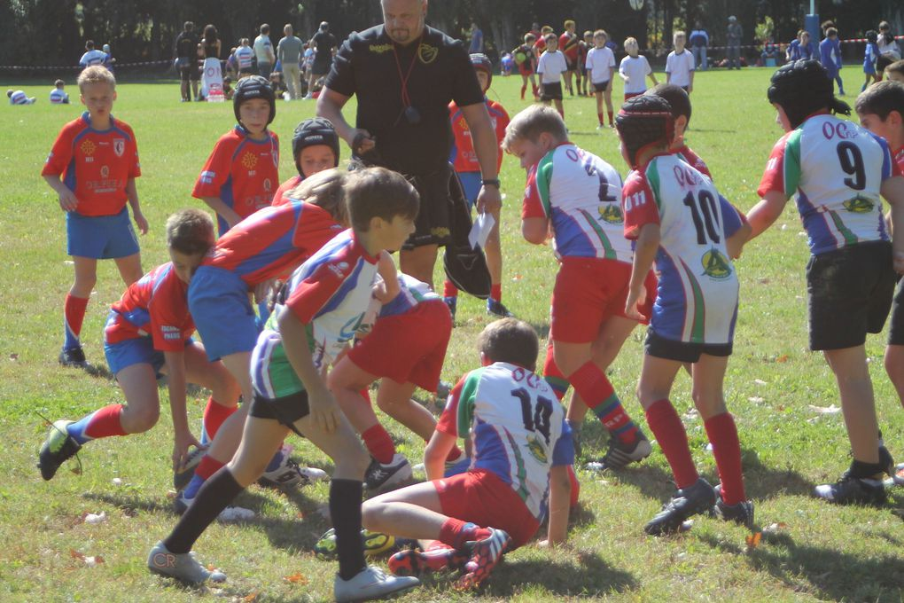 Aude Rugby Perspective 2015