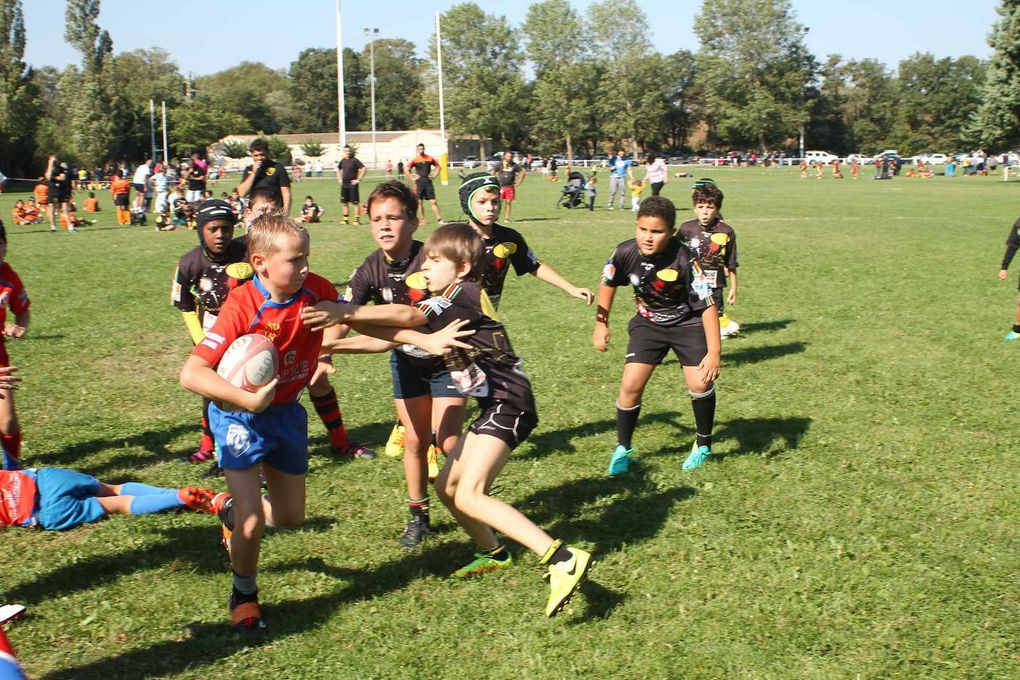 Aude Rugby Perspectives, Caracassonne, 24/09/2016
