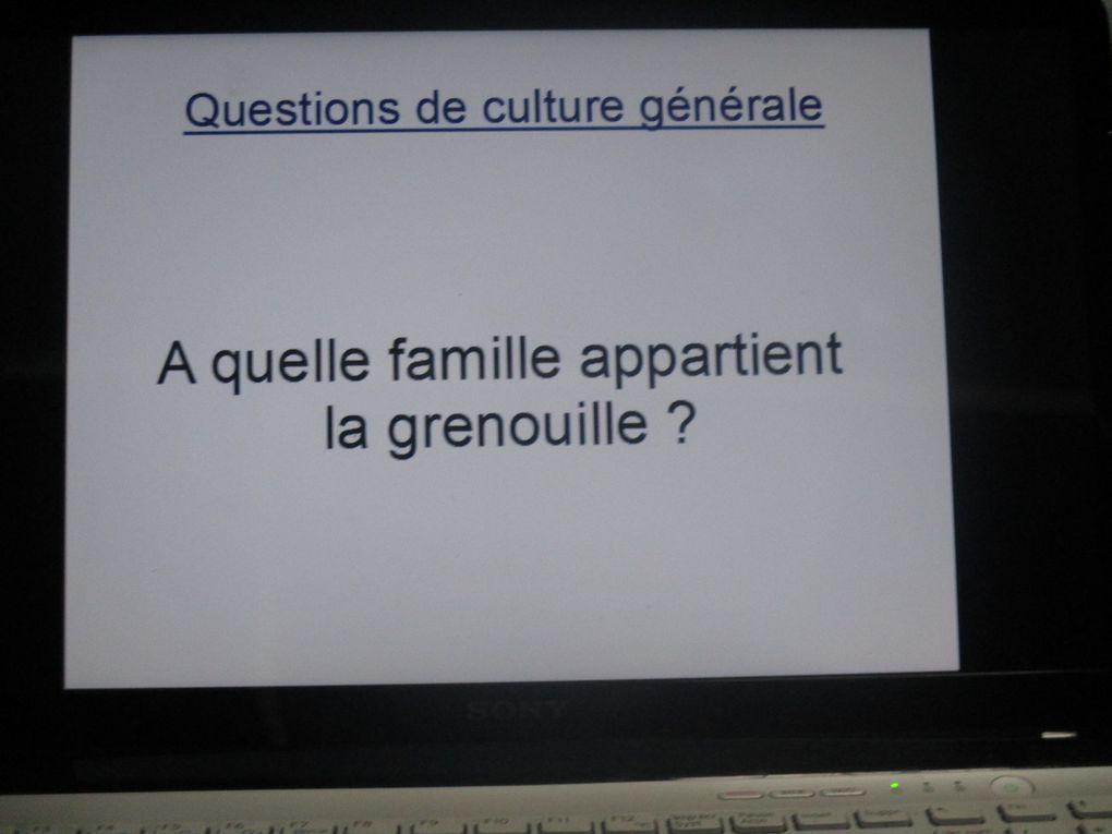 Accordéon et Remue Méninges !!!