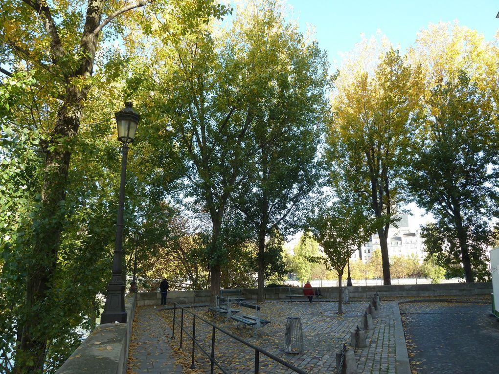 Sur la pointe de l'île, l'ancien Maire de Paris, Bertrand Delanoë a inauguré la Place Louis Aragon en 2012, à deux pas de l'appartement d'Aurélien, le héros du roman d'Aragon qui porte le même nom. La plaque porte quelques vers du poète : « Connaissez-vous l'île / Au cœur de la ville / Où tout est tranquille / Eternellement »