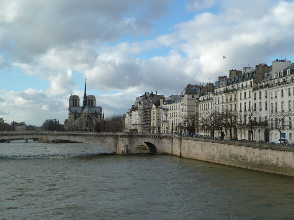 l'île-Saint-Louis, les quais de Seine, Notre-Dame.