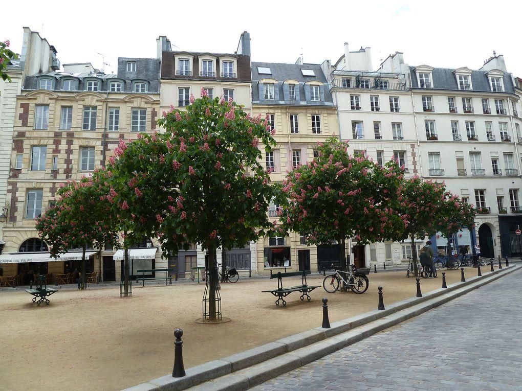 Le Café Procope rue de l'Ancienne Comédie, le pont Neuf, la Place Dauphine, l'horloge de la conciergerie.