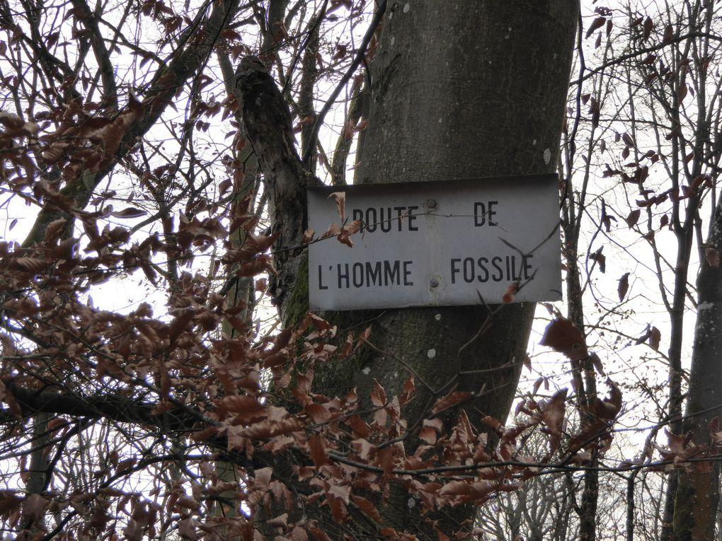 Traversée de la route de Tourzelle et la route de l'Homme Fossile.