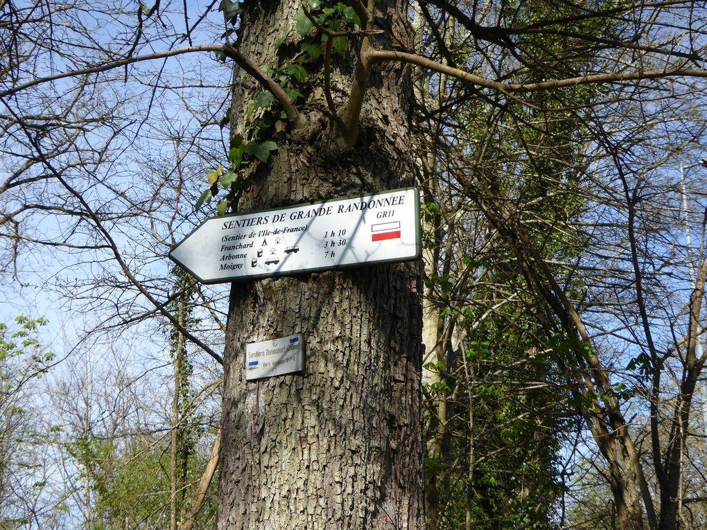 Randonnée à Fontainebleau 15,4 km - 1/2