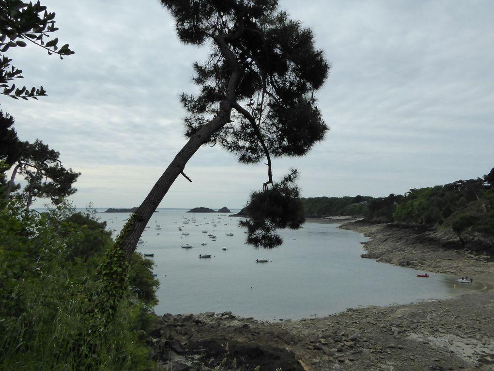Randonnée de Cancale à La Guimorais 21,3 km - 1/2