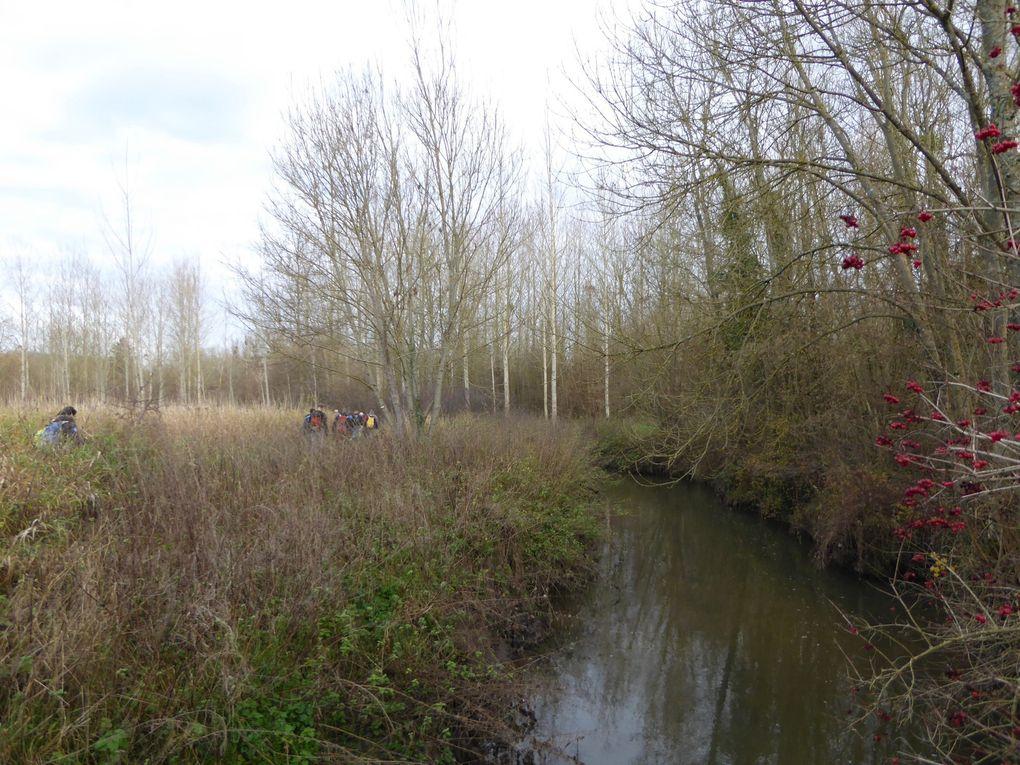 Randonnée en boucle de Crouy-Sur-Ourcq. 1/2 - 20 km.