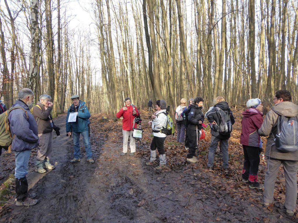 Randonnée de Taverny à Saint-Leu-la-Forêt. 16,3 km