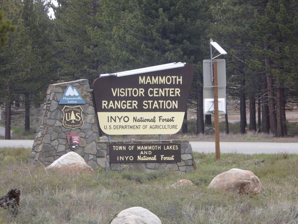Ouest-Américain, Mammoth Lakes - Printemps 2016.