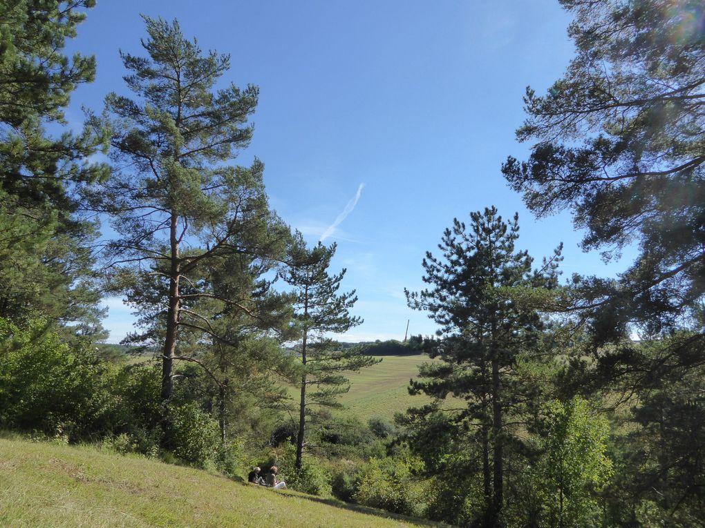 Randonnée de Bonnières-sur-Seine à Rosny-sur-Seine - 19 km.