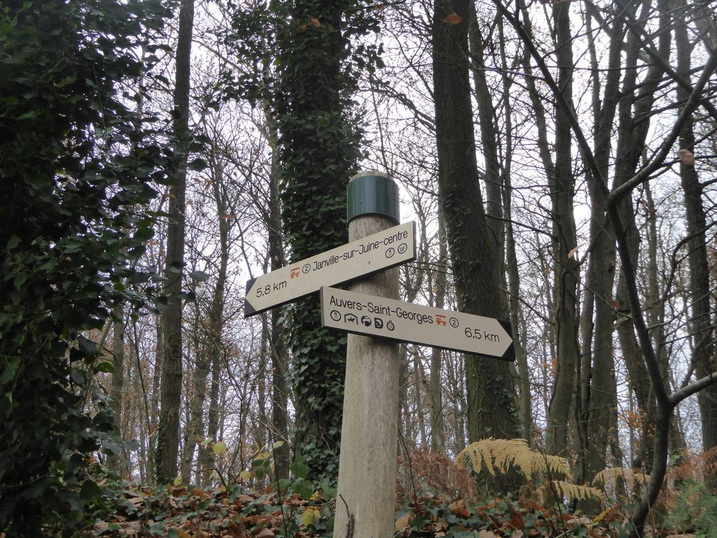 Randonnée de Chamarande à Etrechy - 16,8 km
