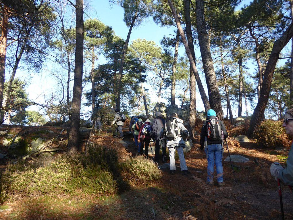 Randonnée de Nemours à Souppes-sur-Loing - 2/2 - 23,4 km.