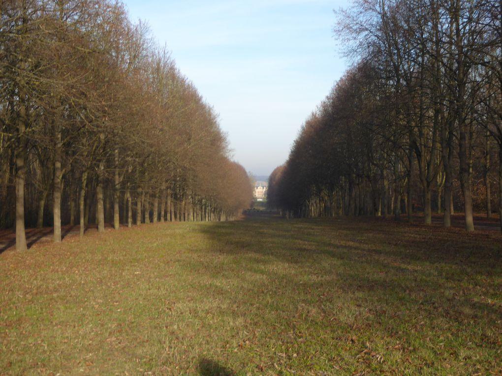 Randonnée de Combs-la-Ville à Boissy-Saint-Léger - 18 km.