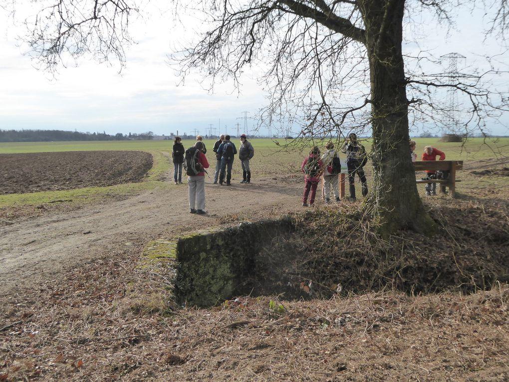 Randonnée ceinture verte de l'île-de-France- Etape 2 - 19,7 km. Première partie.