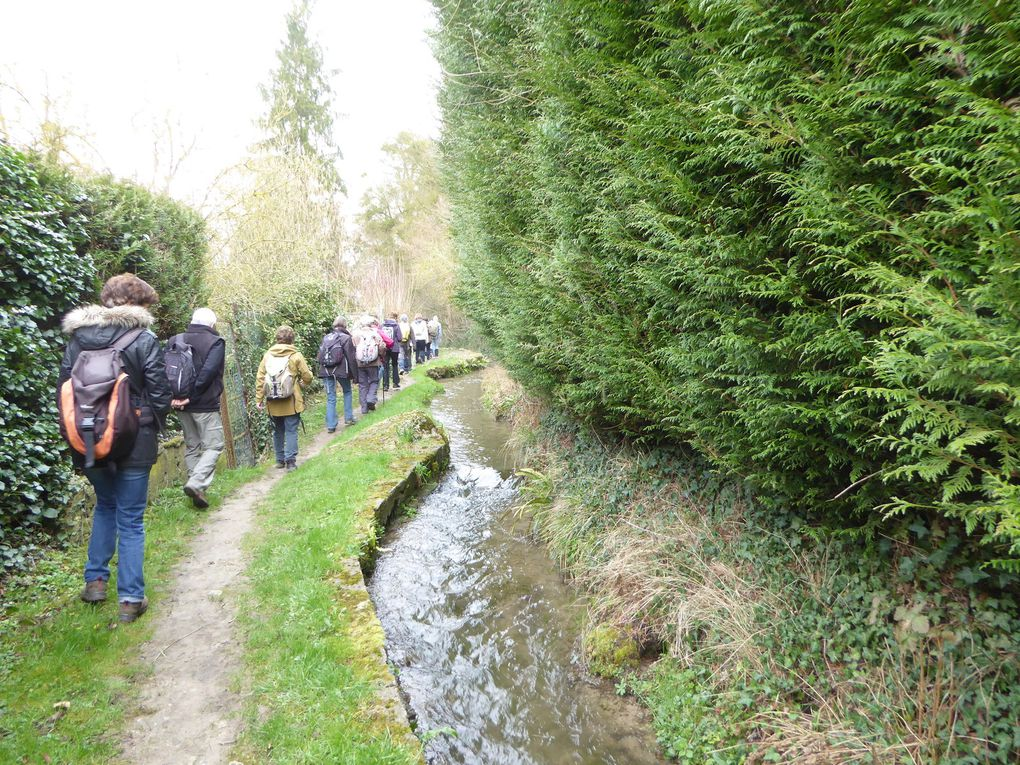 Randonnée, boucle de Meulan-Hardricourt - 18,5 km.