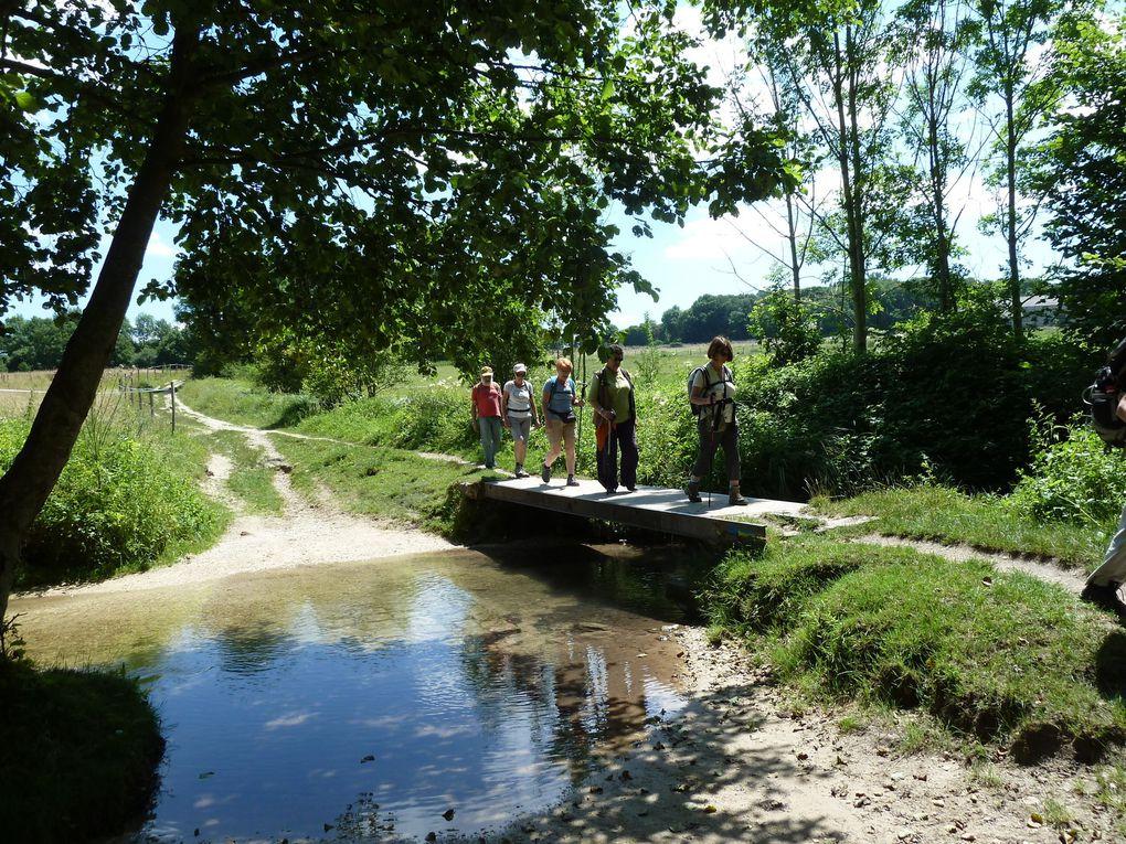 Randonnée de Breuillet-Village à Saint-Chéron - 17 km.