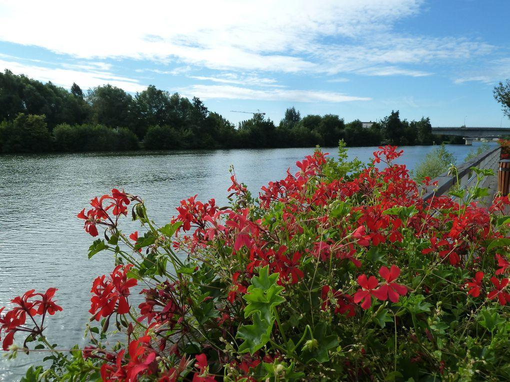 Randonnée en boucle de Montereau-Fault-Yonne - 16 km.