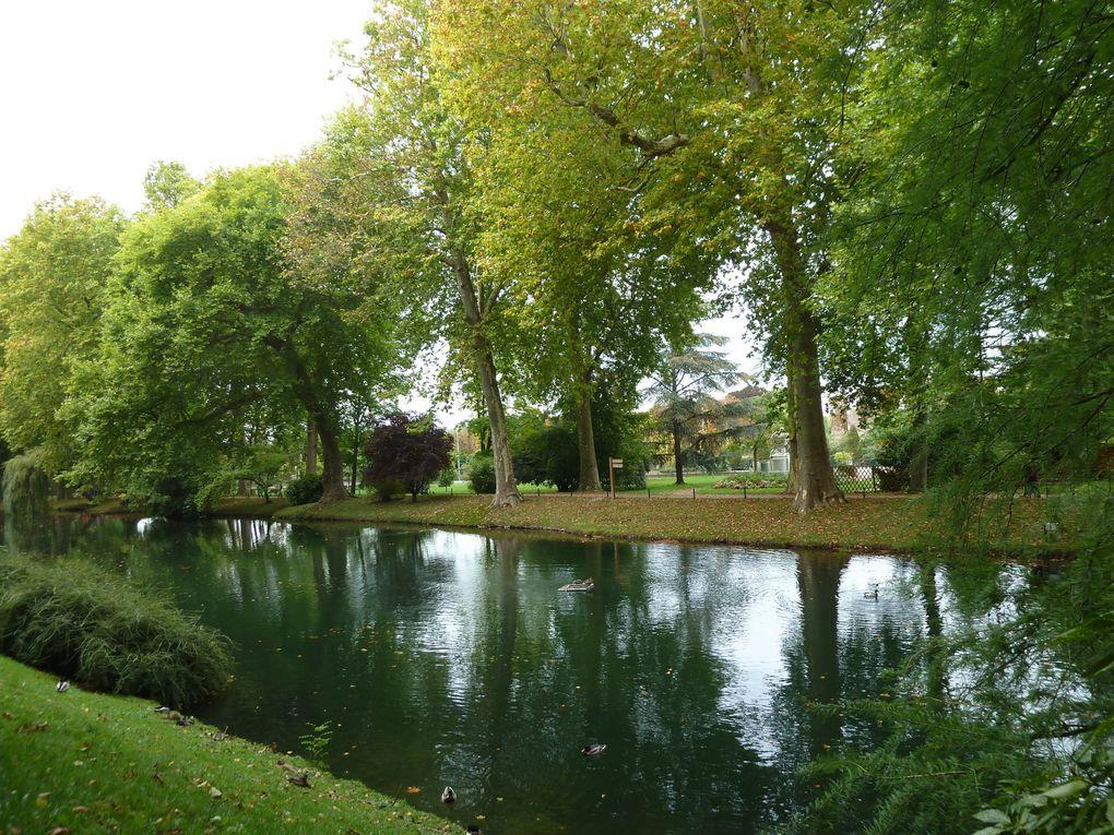 Randonnée de Saint-Germain-en-Laye à Poissy - 19 km.