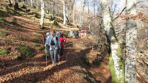 IRATI. Burdinkurutza ( 1135 m ) vers Ataramatze ( 1370 m ). 05 novembre 2015.