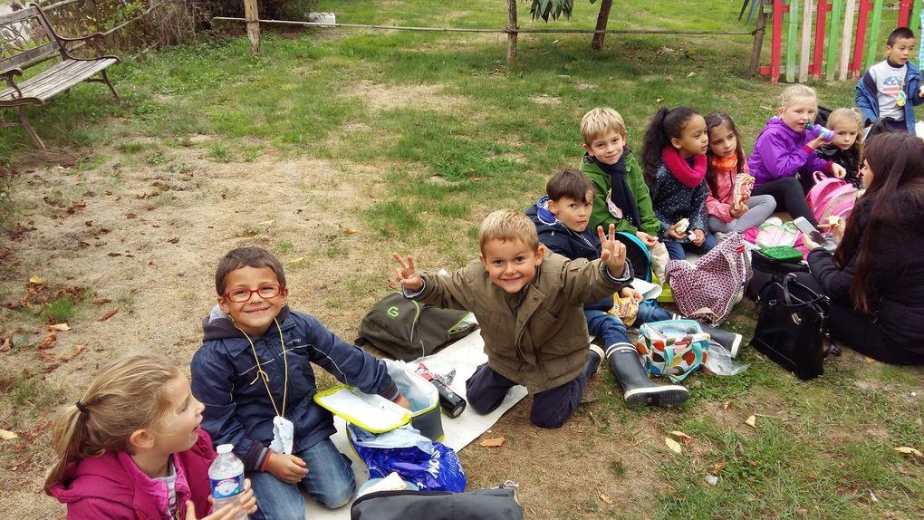 Au jardin de Mélisse, les CP étudient les insectes