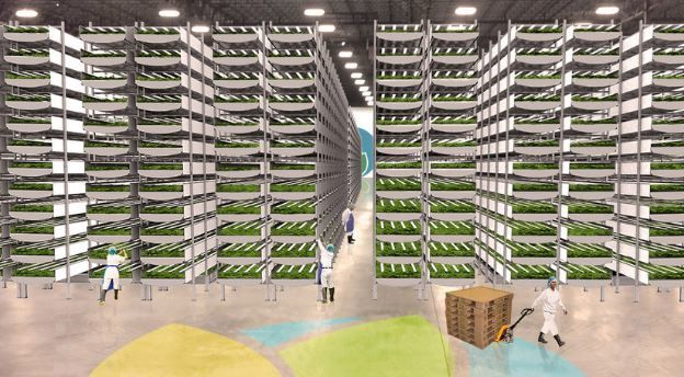 Vertical Farming, Culture hors sol