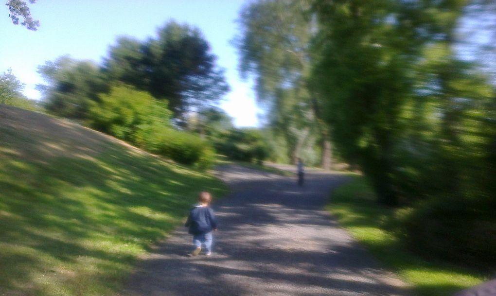 Petit tour au parc ce matin