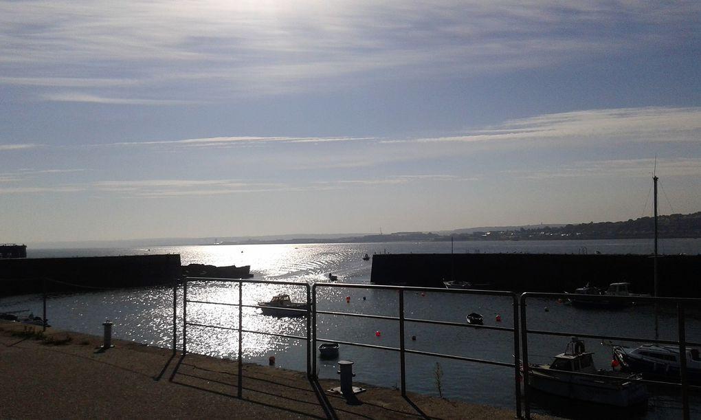 Petite sortie ce matin en bord de mer