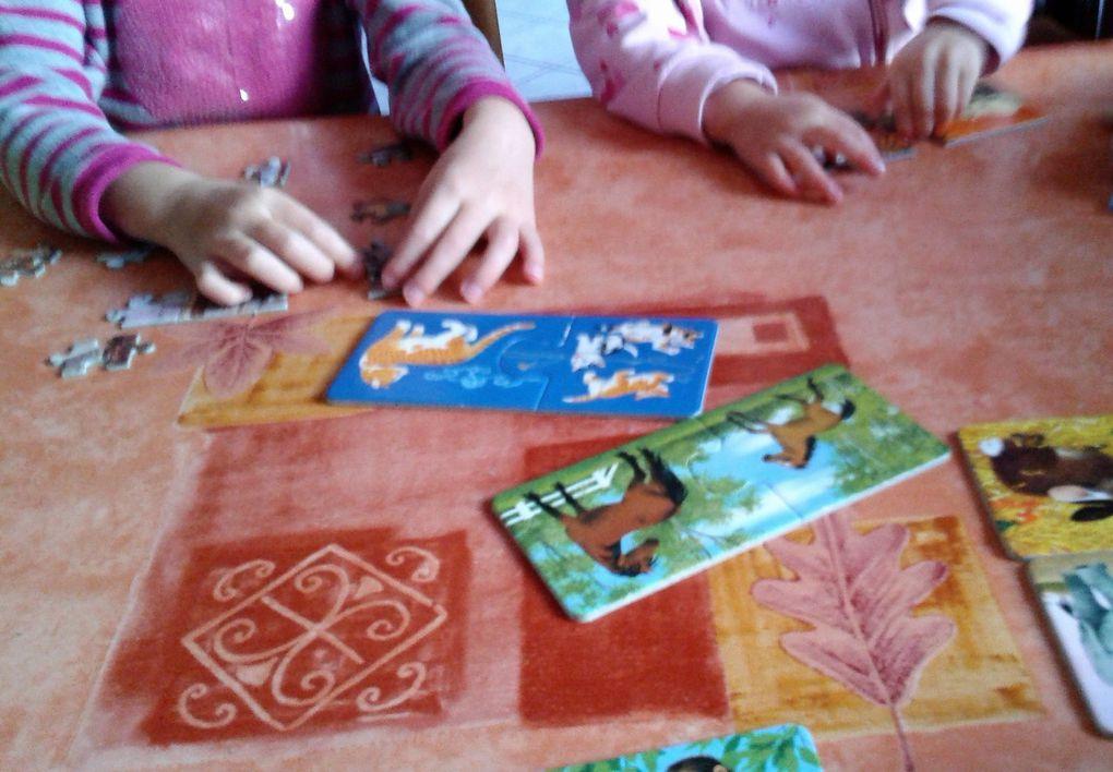 Activité puzzles