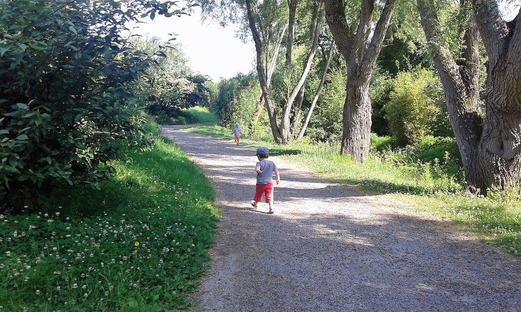 Petit tour au parc