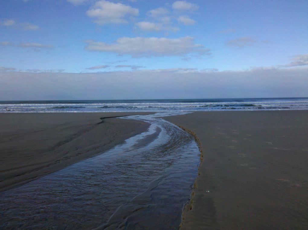 entre l'océan et l'estuaire de la Gironde , la pointe Médoc ( photos par liber-t ) .