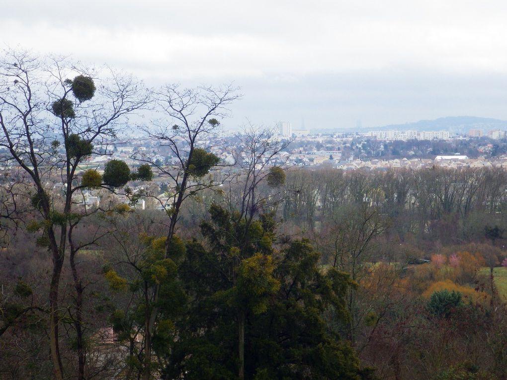 """Piquenique sur la terrasse de Saint Germain avec une vue pas """"très dégagée"""" sur Paris devant nous et le Chateau de Saint Germain derrière nous !"""