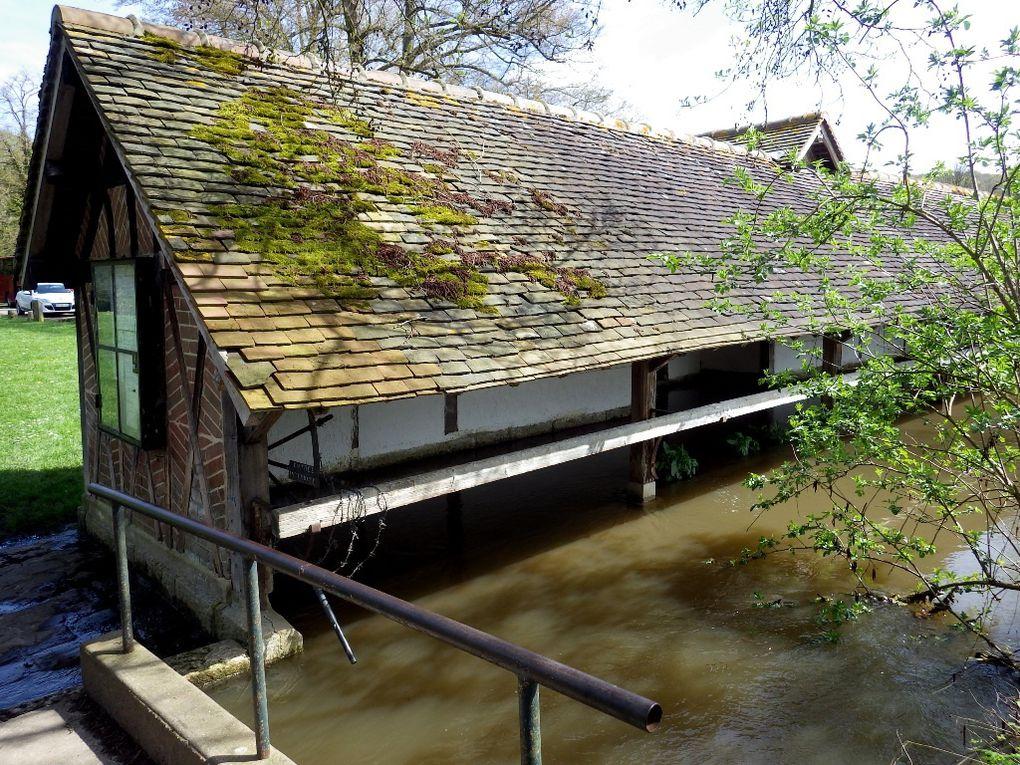 Le Moulin de Fourges et le lavoir. Nous avons remarqué un ragondin intrigué par notre présence.