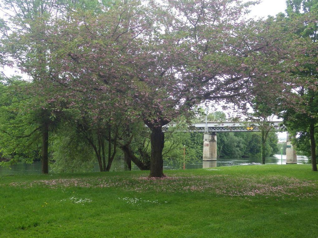 Retour au Pecq par le Parc Corbières.