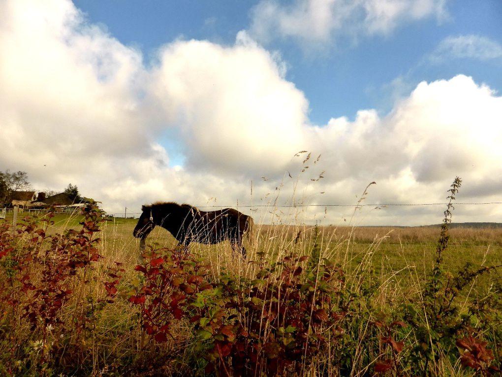 Le Vexin en automne ...