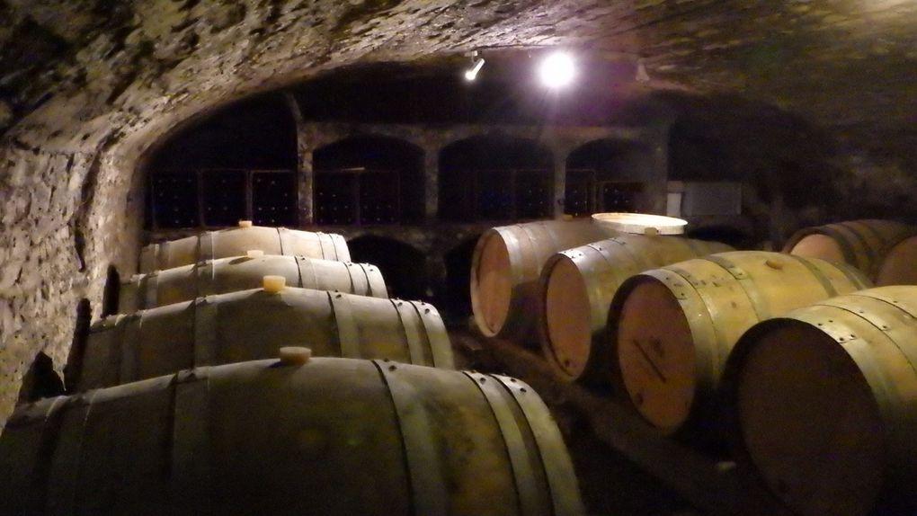 Visite et dégustation au Chateau de Chassagne-Montrachet