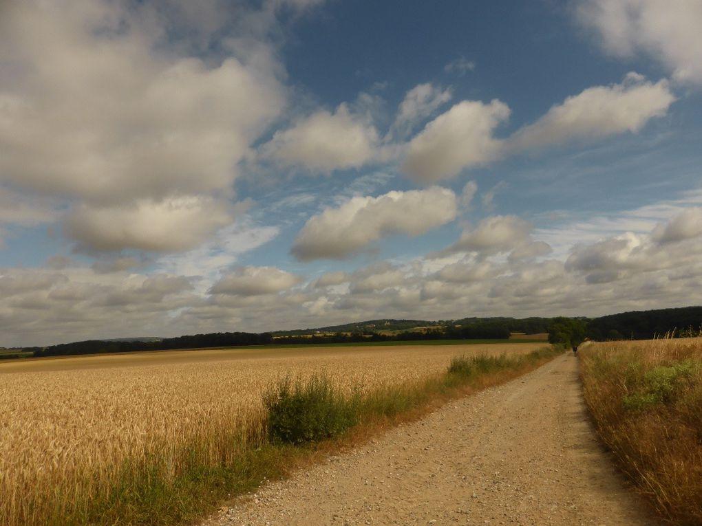 Ce sont des chemins à travers d'immenses cultures de blé, avoine... mais aussi betteraves, choux, petits pois ...