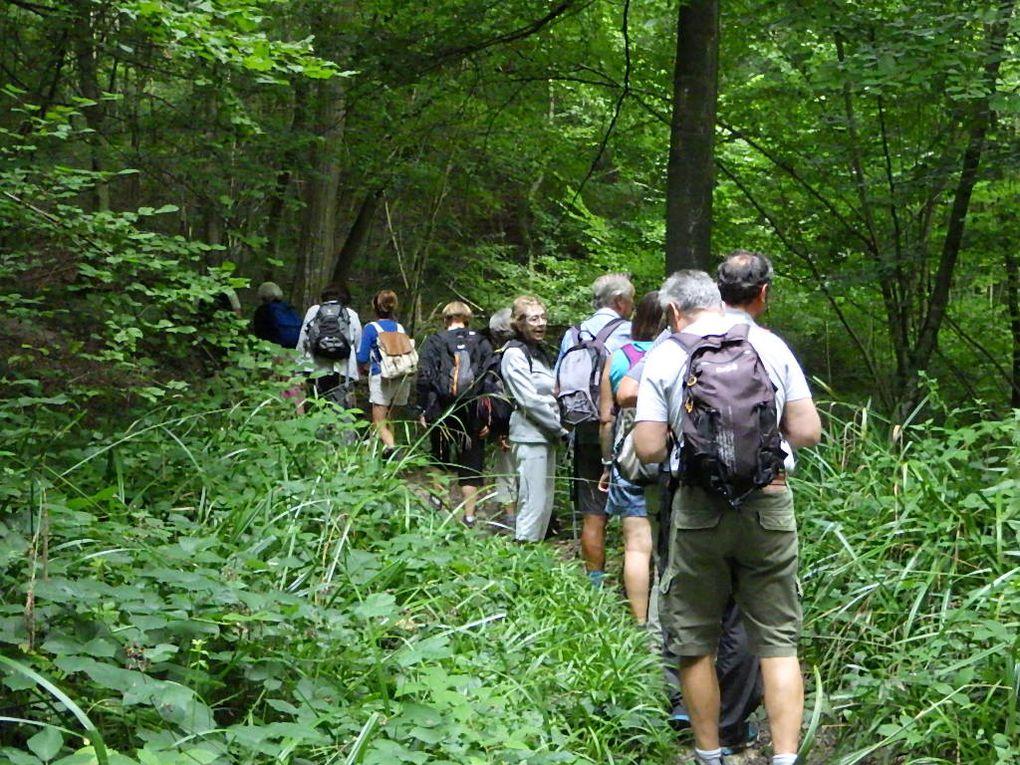 Départ de nos 15 km de forêt