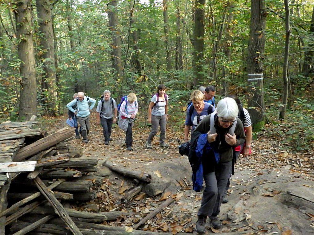Puis le Bois de la Jonchère et là,  avec les dénivelés d'aujourd'hui on pense à nos copains sur les bosses de Fontainebleau !